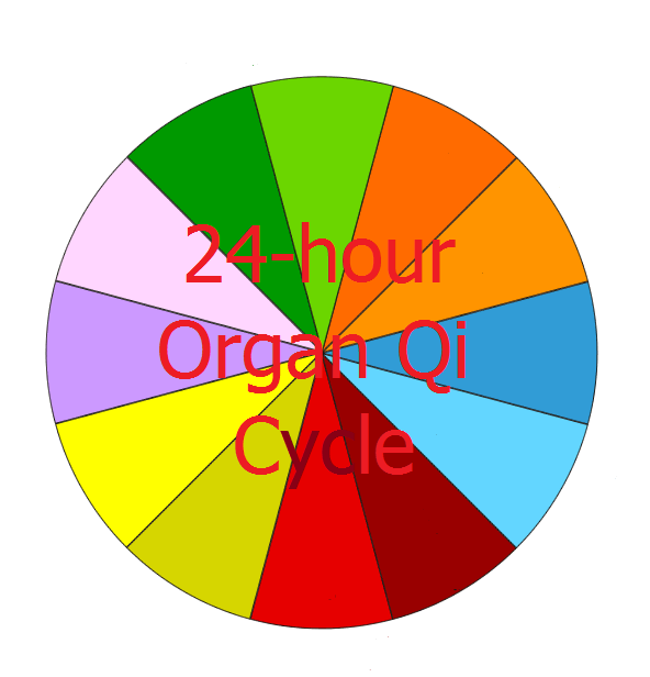 24-hour Organ Qi Cycle Emotions